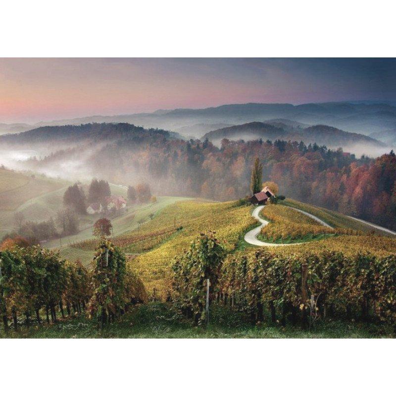 Prijs-plezierwijnen, 6 witte en 6 rode wijnen